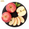 礼泉纸加膜红富士苹果10斤24个
