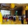 充气海洋球低价批发广州充气大型迪士尼乐园租赁惠州攀岩