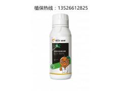 柑橘树专用施达优适龄肥海藻型生根美果增强抵抗力