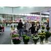 2019北京花卉园艺展览会国际盛会