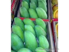 台湾进口水果 三亚芒果 青芒果 大青芒 贵妃芒 澳芒 台农芒果水仙
