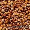 川企酿酒厂长期采购高粱玉米木薯淀粉大米