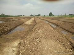 河北【荣化农业】 有机肥  生物有机肥料  草原 有机肥料 羊粪有机肥 广西有机肥,羊粪肥 河北有机肥,羊粪肥