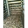 农产品烘智能烘干机_农产品烘干机厂家制造