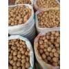 新疆特产  新疆薄皮核桃500g袋装 坚果干果  休闲食品 核桃坚果干果批发