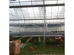 连栋大棚,温室大棚, 温室大棚 连栋大棚连栋蔬菜大棚农业蔬菜大棚