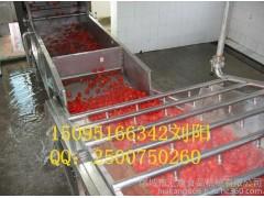 蔬菜清洗机加工、专业制造蔬菜清洗机、蔬菜清洗机多少钱