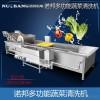 诺邦净菜加工流水线气泡洗菜机 多功能气泡冲浪蔬菜清洗机