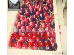 大樱桃,车厘子,红樱桃,意大利早红