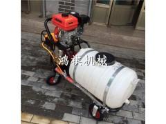 达孜县 家庭农场专用喷雾器 大型植保机械 环保专用打药机