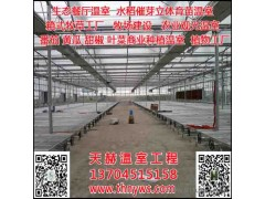 天赫温室,BCZ-8,吉林大棚喷淋系统,长春温室喷淋装置,农业园区规划