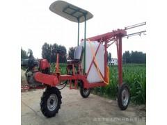 家庭农场专用喷雾器 大型果树喷药机 新型高杆打药机