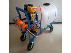 自走式打药机 小型喷雾打药机 农药喷洒无人机 植保无人机