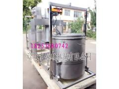 整颗鲜榨柠檬汁压榨机 猕猴桃果浆、发酵果蔬汁、火龙果汁压榨机