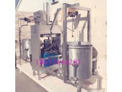 矮冬瓜、木瓜鲜榨果汁冷压式提取设备 静置无杂质果酒压滤机