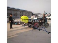 新款弥雾机  质量可靠打药机小型烟雾机性能农用工具  批发