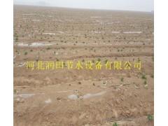 【厂家】湖南大棚葡萄滴灌塑料滴水带 价格实惠 农用工具