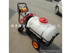 农用工具田地打药机 推车式蔬菜喷洒机 树木高压消毒机