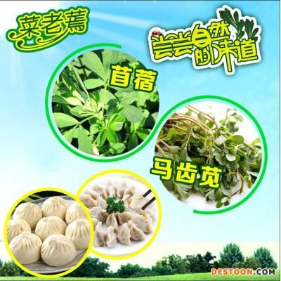 菜老蔫厂家野菜出售批发 速冻野菜 冷冻野菜
