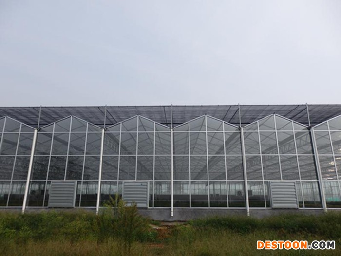 禄丰农业工程承建智能玻璃温室/智能温室