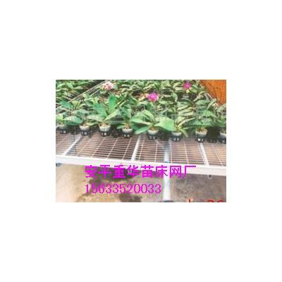 供应园艺用具苗床网#温室苗床手轮#苗床温室骨架
