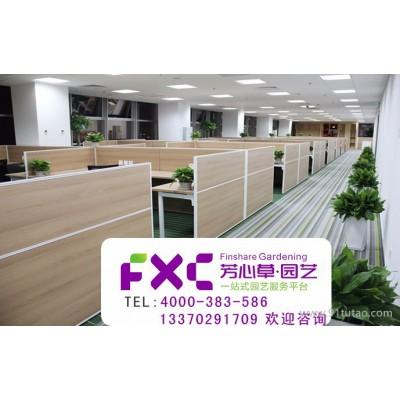 上海芳心草 植物租赁