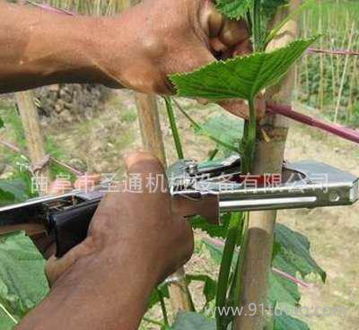 年货时令蔬菜绑枝机 不伤嫩苗绑枝机 蔬菜基地高效绑枝机