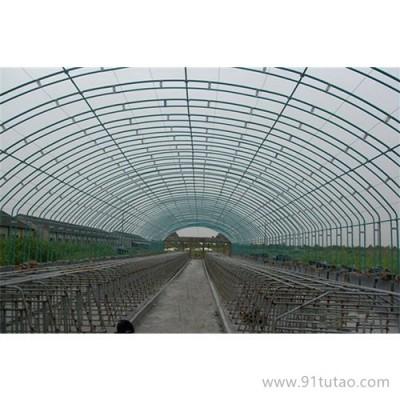 博利农业 种植大棚价格