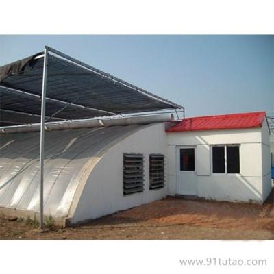 博利农业 供应 葡萄种植大棚