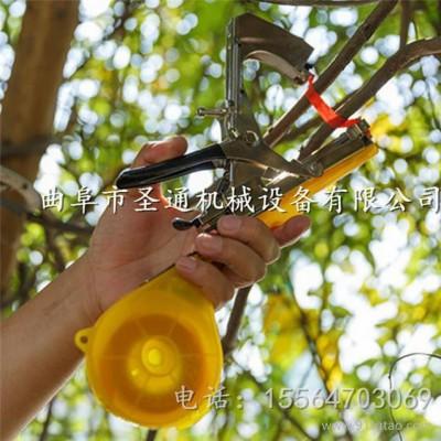 观赏花架引蔓绑枝机 苍溪猕猴桃棚架固定捆绑机 小型多功能绑蔓器