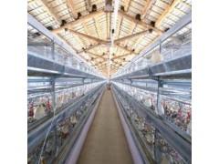 智能畜禽养殖管理系统厂家价格  / 农业物联网 / 河南云飞科技