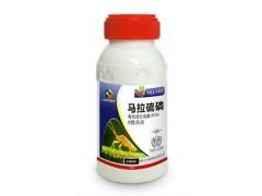 45%马拉硫磷 专杀水稻稻飞虱  马拉硫磷正规生产厂家