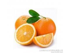 预售产地直销江西特产腊月红脐橙新鲜水果赣南脐橙20斤 礼品