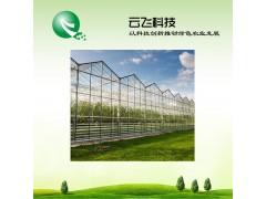 农业大棚监控系统提供规划设计_河南云飞科技