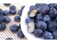 东部源生态 精品蓝莓 新鲜水果 蓝莓批发 蓝莓价格  蓝莓厂家 欢迎来电咨询