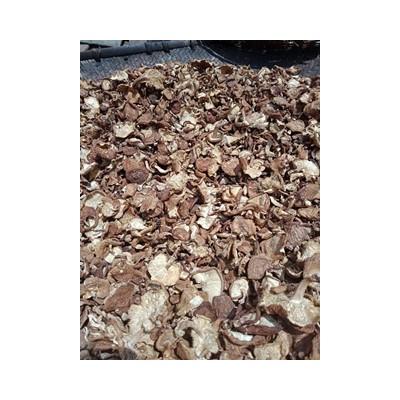 西南林区系列 晾干野生蘑菇——自然晾晒