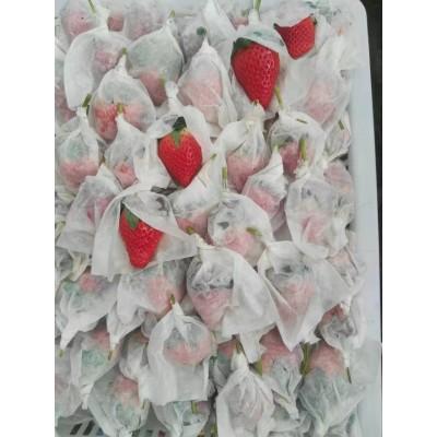 新鲜草莓农民种植销售