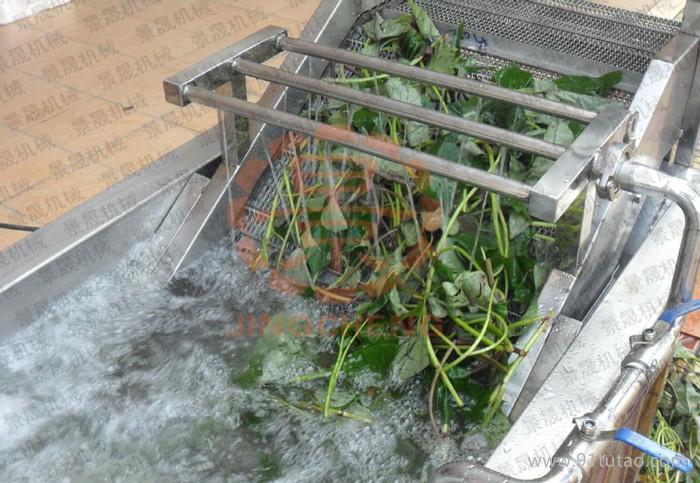 翻浪洗菜机 果蔬加工设备 洗菜机家用 果蔬洗菜机 自动洗菜