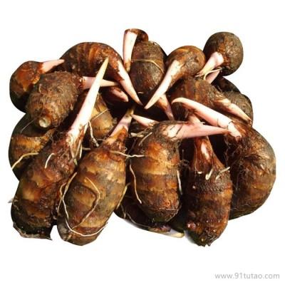 香芋新鲜蔬菜毛芋头小芋头福建特产红芽芋有机农产品包邮一件代发