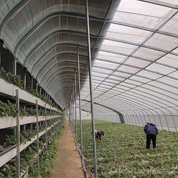 蔬菜大棚厂家富农温室供应蔬菜大棚 塑料蔬菜大棚 温室蔬菜大棚