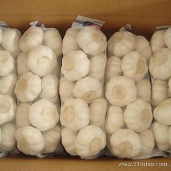 有机大蒜 大蒜种植 优质大蒜 大蒜批发 大蒜厂家 大蒜生产