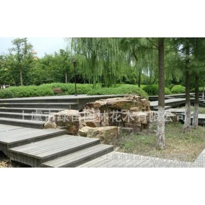 绿苗园林花木  厂家专业承包设计   园林景观