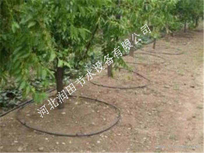【农用工具】【紊流器 小管出流】贵港市沙糖桔灌溉设备