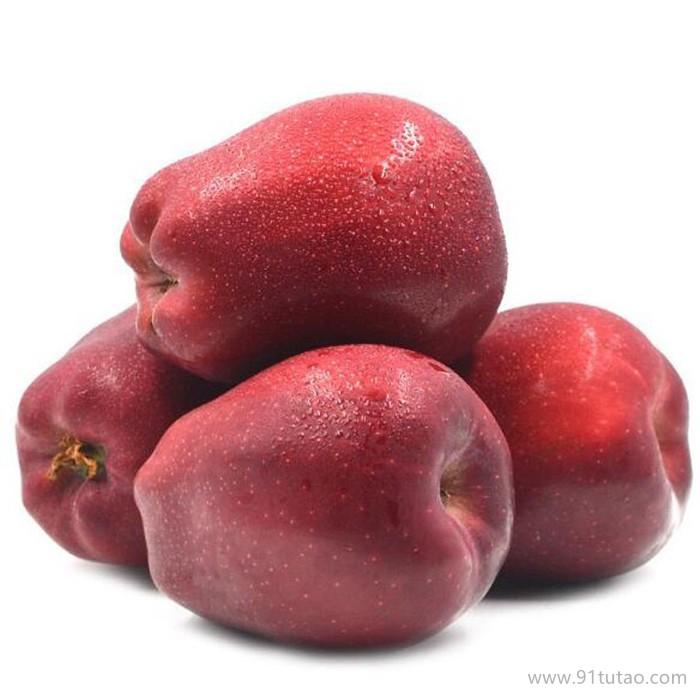 饶阳恒发 代购批发  新鲜水果    新鲜花牛苹果 花牛 品种齐全