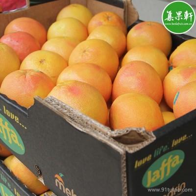 Jaffa 以色列西柚 批发 广州一手货源批发  葡萄柚进口商