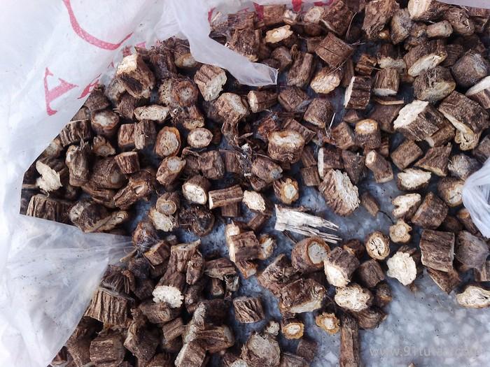 供应地产干防风 植物原药材