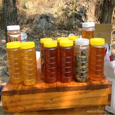 厂家直销 蜂蜜 野生蜂蜜 野生蜂蜜 自家蜂蜜
