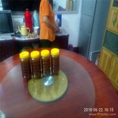 厂家直销 蜂蜜 野生蜂蜜 野生蜂蜜自家 土蜂蜜  原生态 蜂蜜