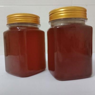 巴马野蜂蜜野生蜂蜜 (土蜂蜜) 欢迎大家前来选购