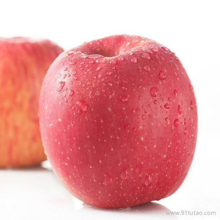 现挖现卖 嘎啦苹果苗 苹果树苗 二年生苹果苗 农场直供易栽种